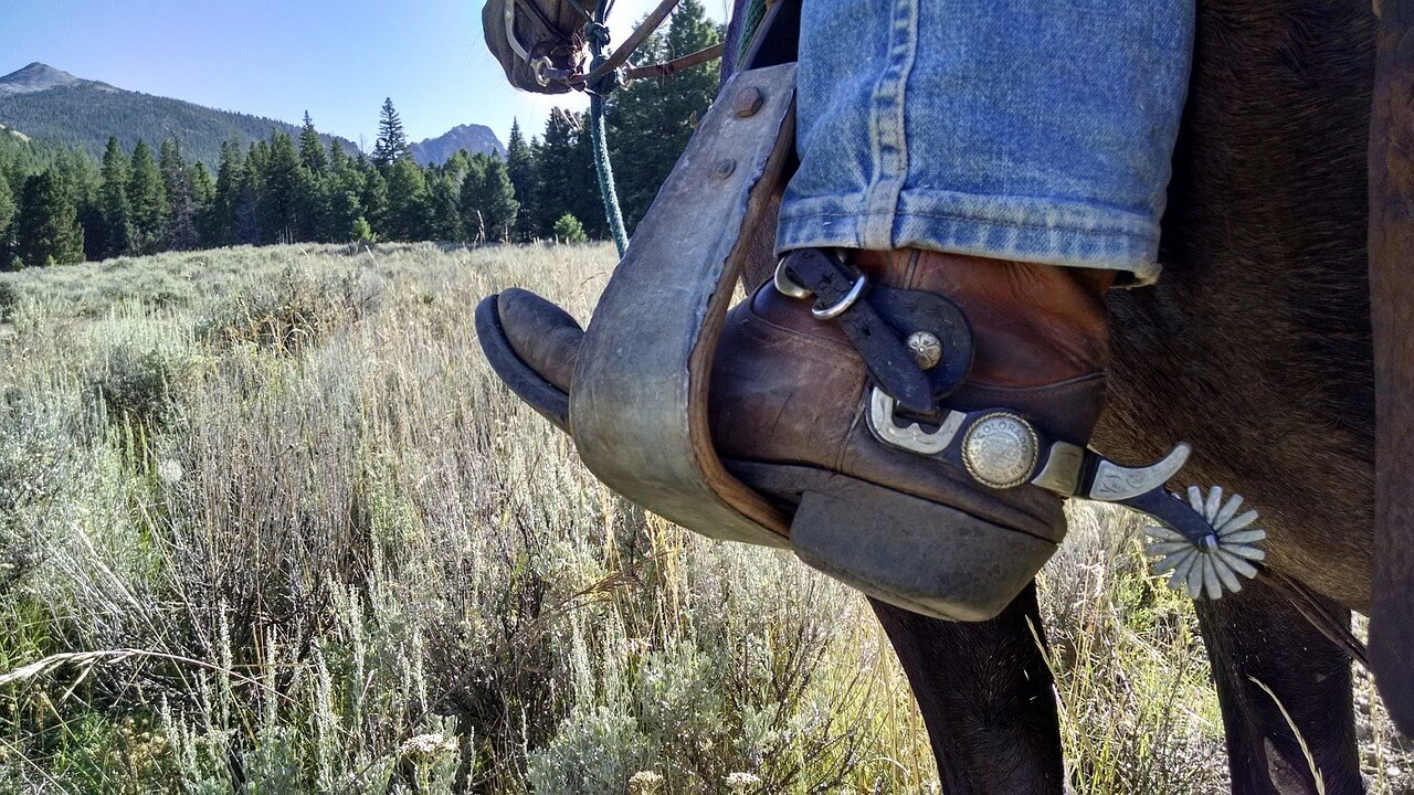 Thoughts on Horsemanship